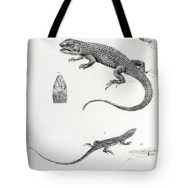 Shingled Iguana Tote Bag by English School