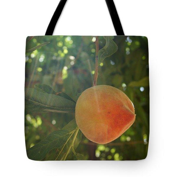 Shining Peach Tote Bag by Kerri Mortenson