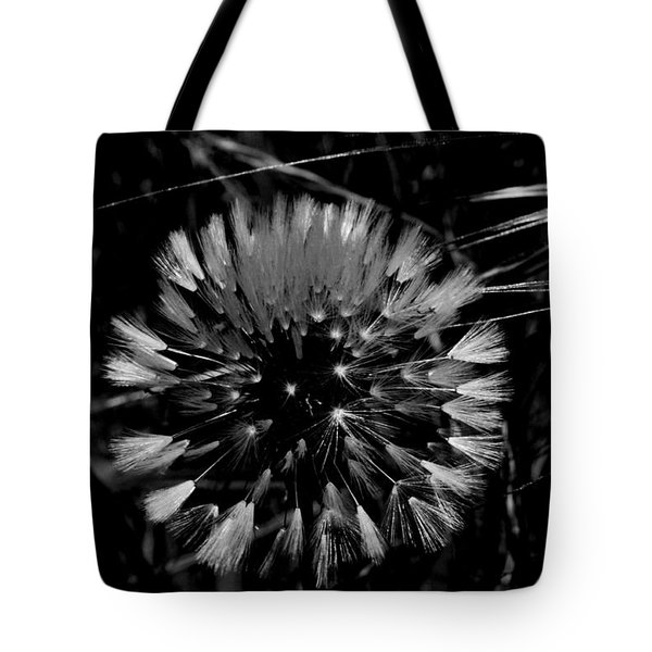 Tote Bag featuring the photograph Shining by Simona Ghidini