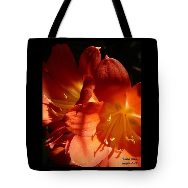 Shining Star Tote Bag