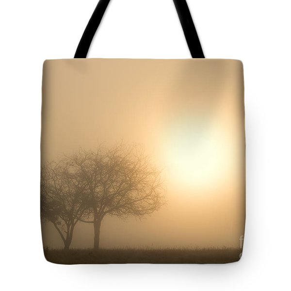Shining Through Tote Bag by Mike  Dawson