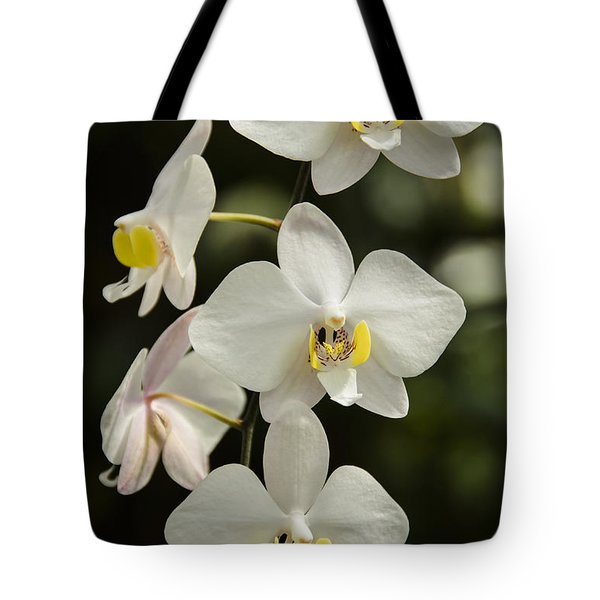 Shinning Orchids Tote Bag by Penny Lisowski