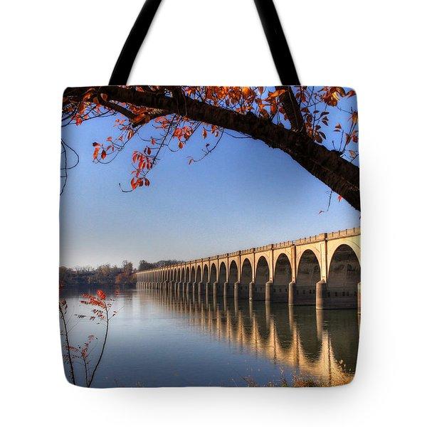 Shipoke In Autumn Tote Bag by Lori Deiter