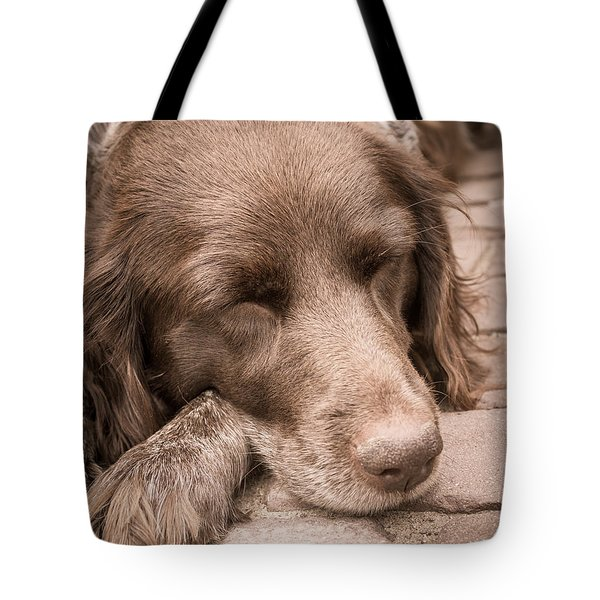 Tote Bag featuring the photograph Shishka Dog Dreaming The Day Away by Peta Thames