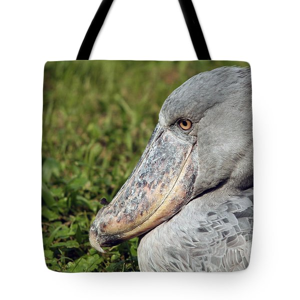 Tote Bag featuring the photograph Shoebill Balaeniceps Rex by Liz Leyden