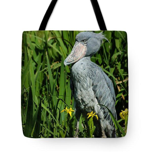 Shoebill Stork Tote Bag by Georgia Mizuleva