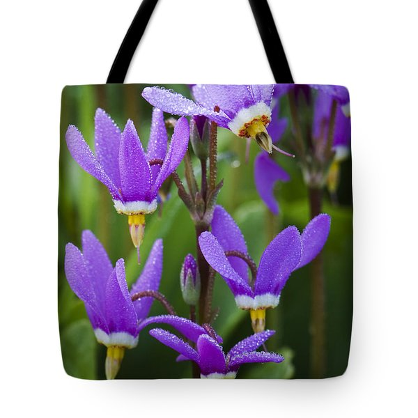 Tote Bag featuring the photograph Shooting Stars by Sonya Lang