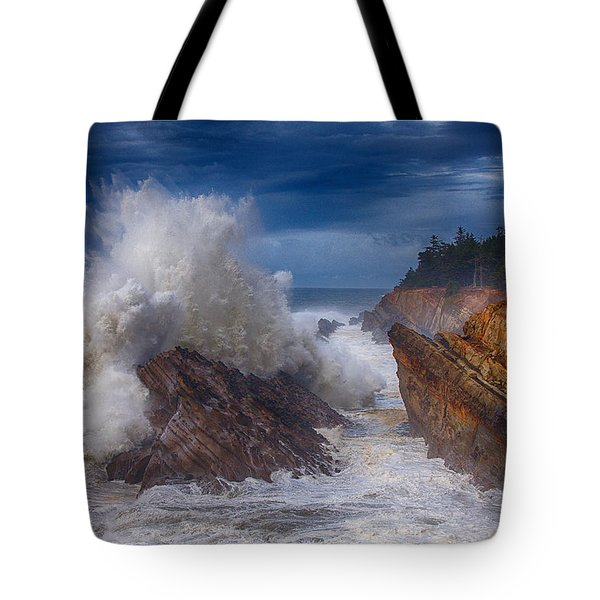 Shore Acre Storm Tote Bag by Darren  White