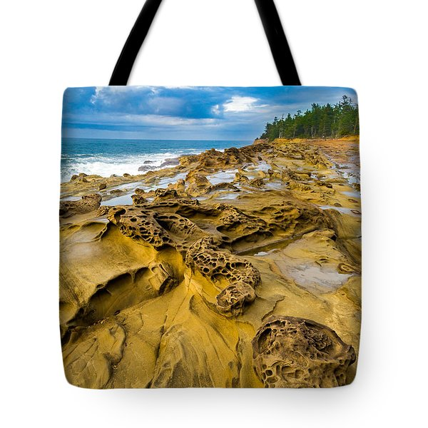 Shore Acres Sandstone Tote Bag by Robert Bynum