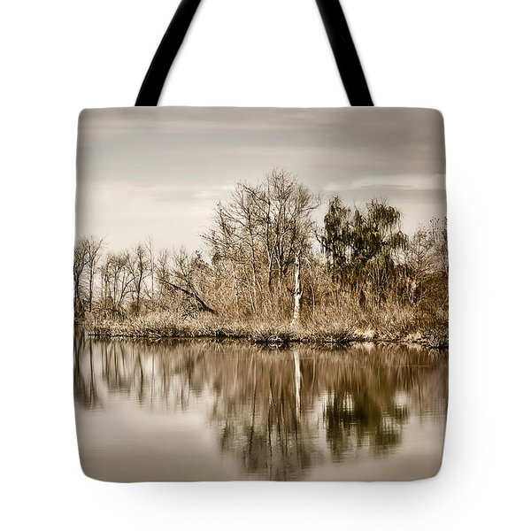 Tote Bag featuring the photograph Shoreline 1 by Greg Jackson