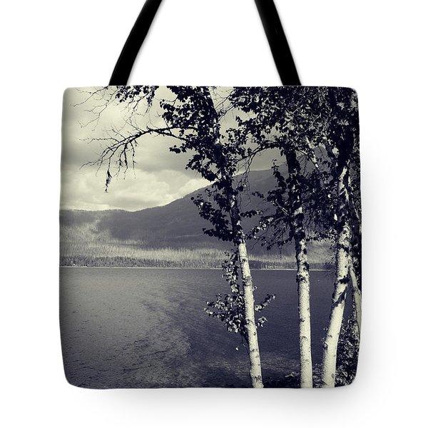 Shoreline Tote Bag by Leanna Lomanski