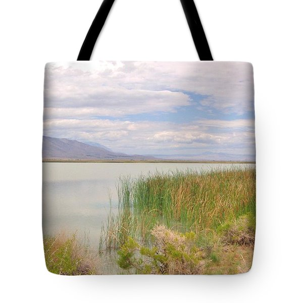 Tote Bag featuring the photograph Shoreline by Marilyn Diaz