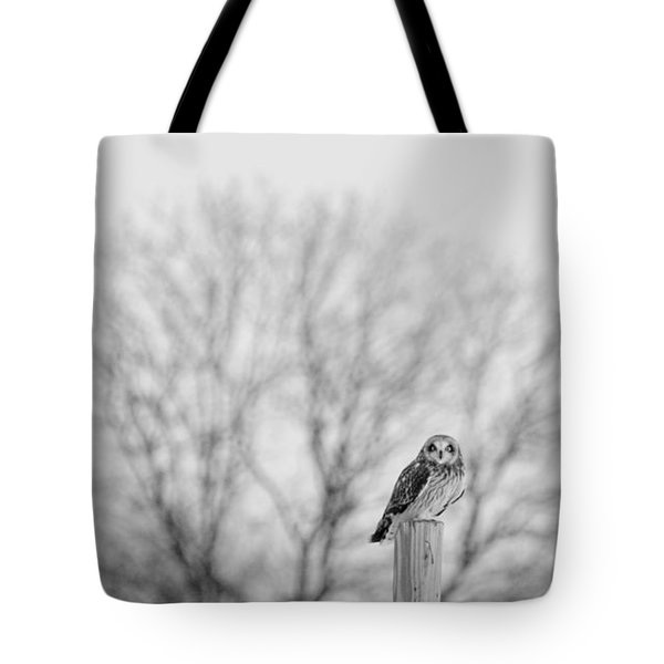 Short-eared Owl In Black And White Tote Bag