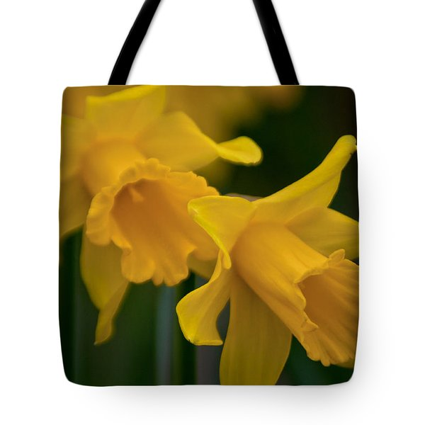 Shout Out Of Spring Tote Bag by Tikvah's Hope