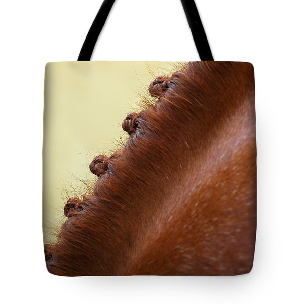 Show Horse Braids Tote Bag