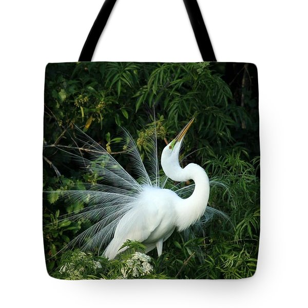 Showy Great White Egret Tote Bag