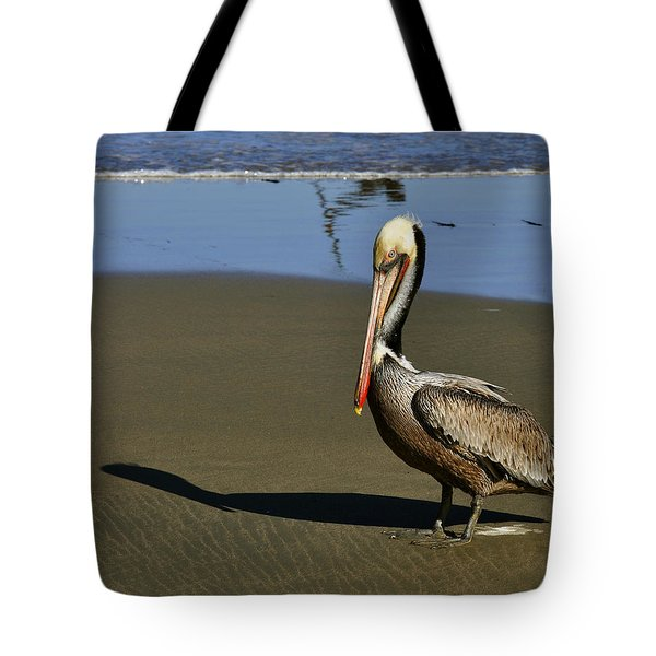 Shy Pelican Tote Bag by Gandz Photography