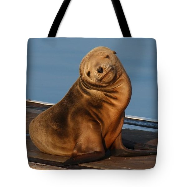 Shy Sea Lion Pup  Tote Bag