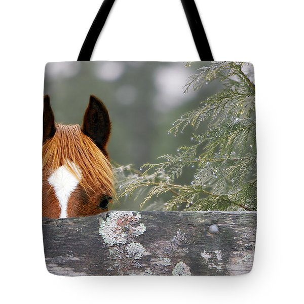 Shyness Tote Bag by Michelle Twohig