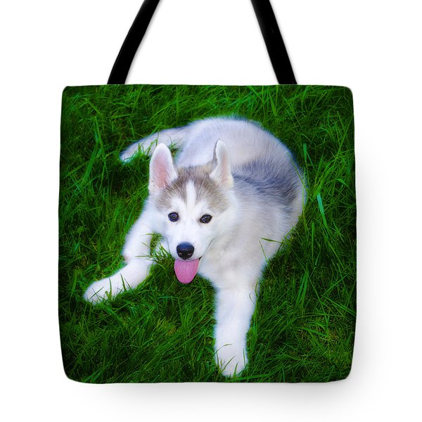 Siberian Huskie Tote Bag by Bill Cannon