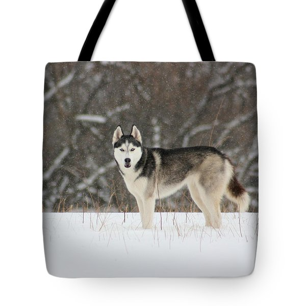 I've Been Spotted Tote Bag