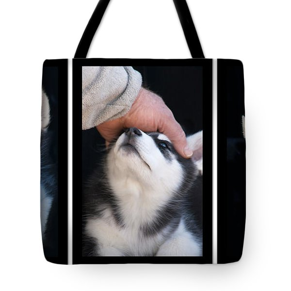 Siberian Husky Puppies Mans Best Friend Tote Bag