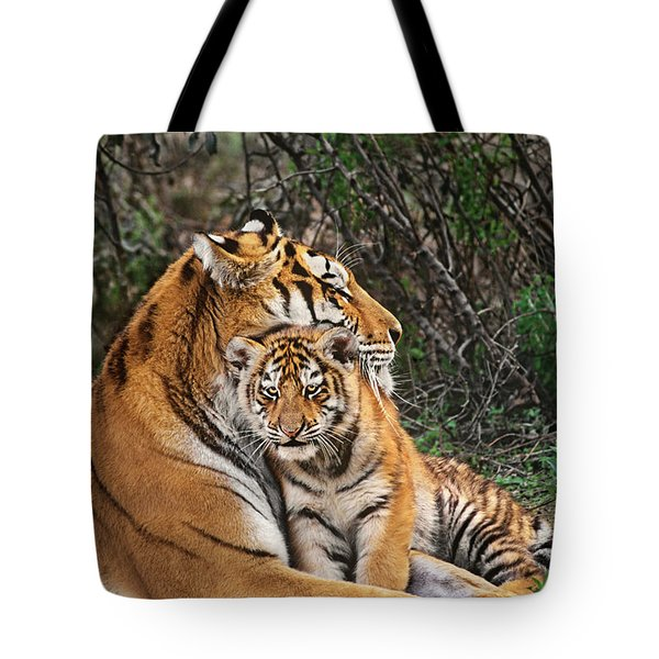 Siberian Tiger Mother And Cub Endangered Species Wildlife Rescue Tote Bag by Dave Welling