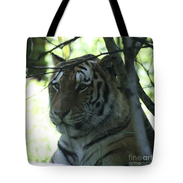 Siberian Tiger Profile Tote Bag by John Telfer