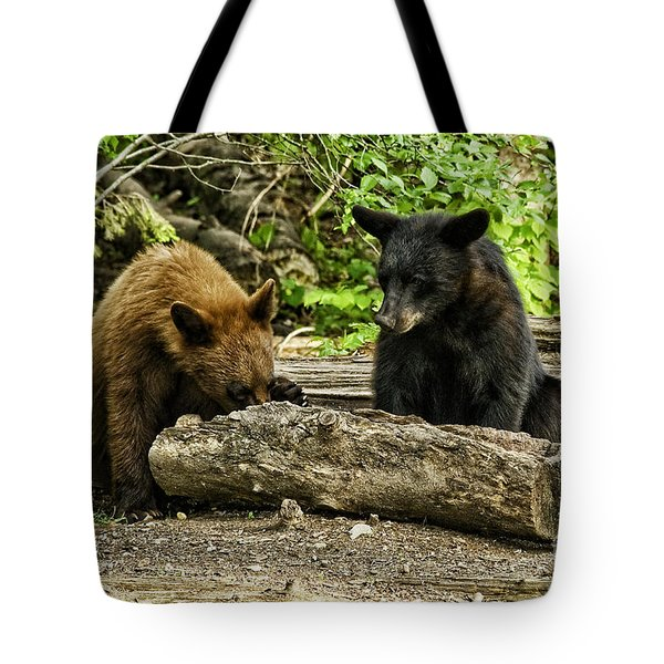 Sibling Lunch Tote Bag