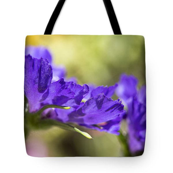 Sideview Tote Bag by Caitlyn  Grasso