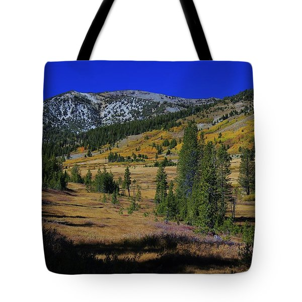 Tote Bag featuring the photograph Sierra Fall  by Sean Sarsfield