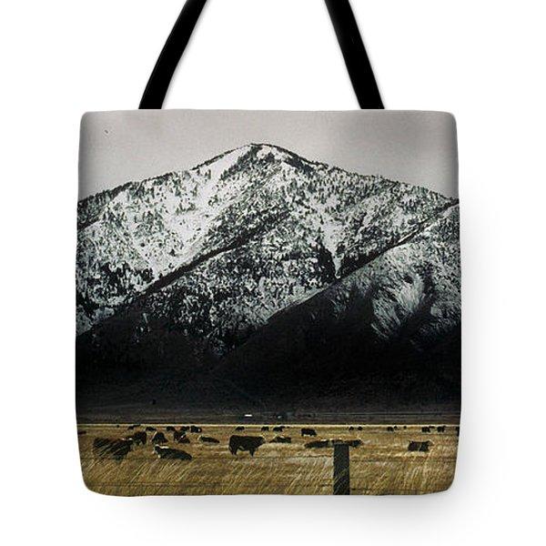 Sierra Nevada Mountains Near Lake Tahoe Tote Bag by Steve Archbold