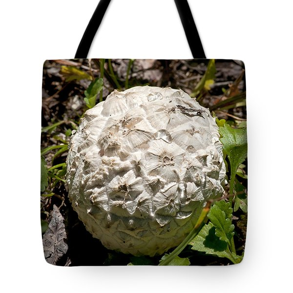 Tote Bag featuring the photograph Sierran Puffball by Betty Depee