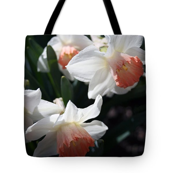 Tote Bag featuring the photograph Signs Of Spring by Kay Novy