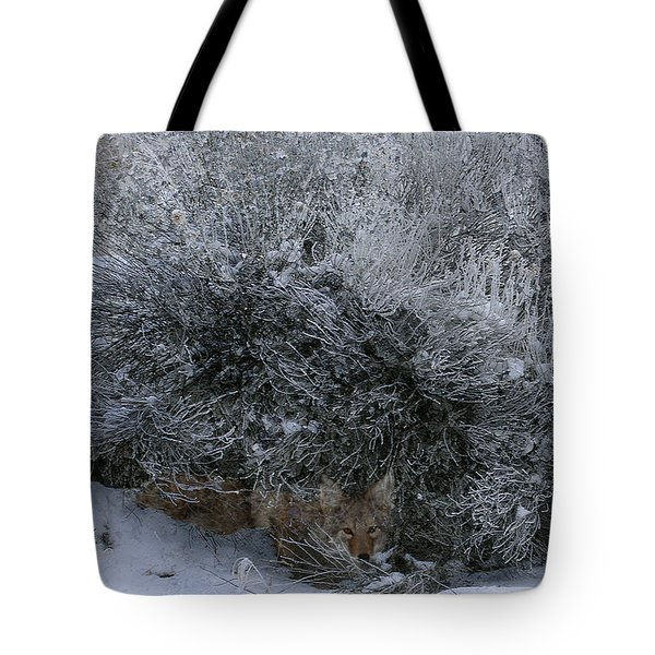 Silent Accord Tote Bag by Ed Hall