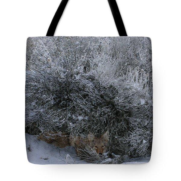 Silent Accord Tote Bag
