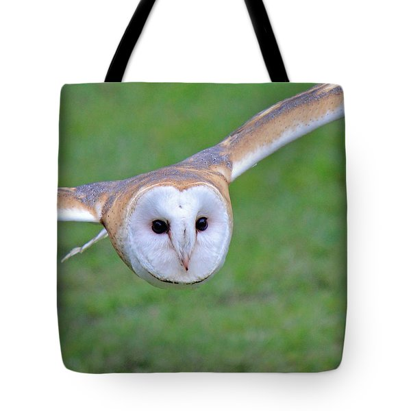 Silent Approach Tote Bag by Randy Hall