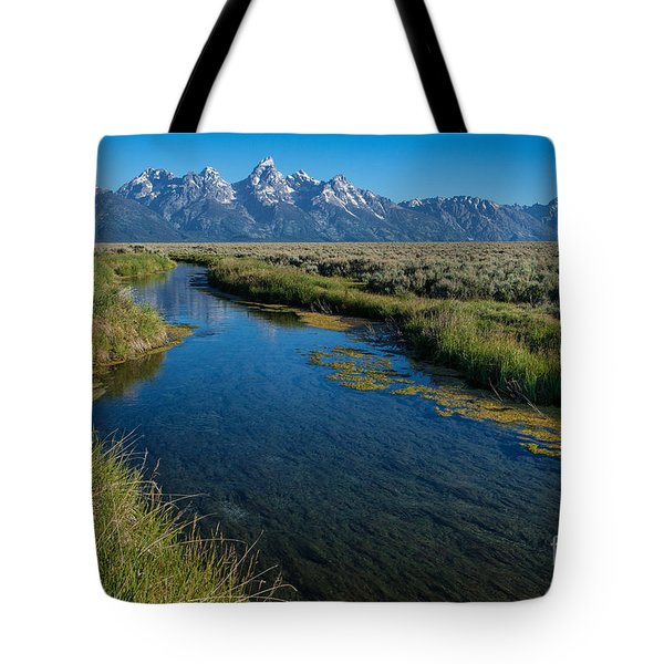 Silent Pathway To The Grand Tetons Tote Bag by Sandra Bronstein