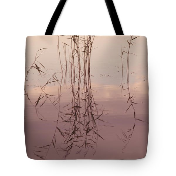Silent Rhapsody. Sacred Music II Tote Bag by Jenny Rainbow
