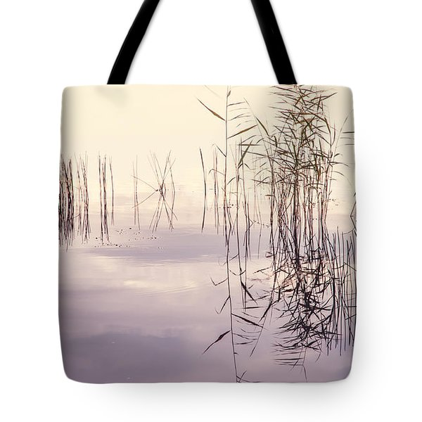 Silent Rhapsody. Sacred Music Tote Bag by Jenny Rainbow