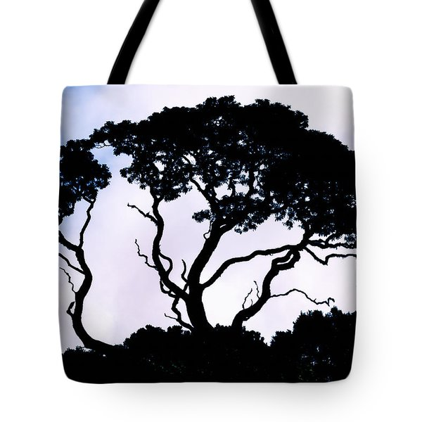 Tote Bag featuring the photograph Silhouette by Jim Thompson