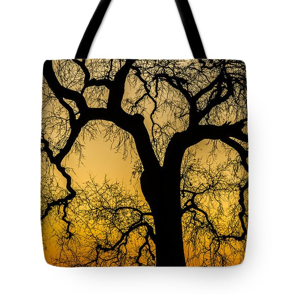 Silhouette Oak Tote Bag