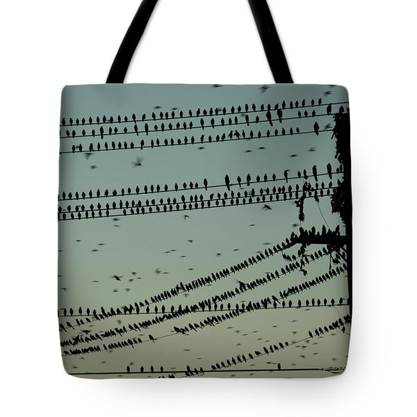 Silhouette Of Birds Gathering On Wires Tote Bag
