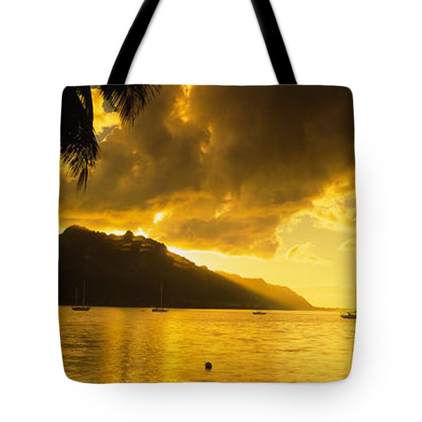 Silhouette Of Palm Trees At Dusk, Cooks Tote Bag by Panoramic Images