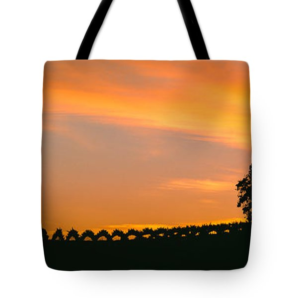 Silhouette Of Vineyard At Sunset, Paso Tote Bag
