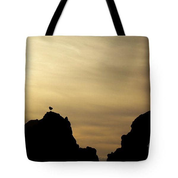 Silhouetted Sea Gull Tote Bag