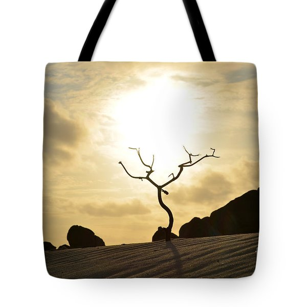 Silhouetted Tree At Dawn In Aruba Tote Bag