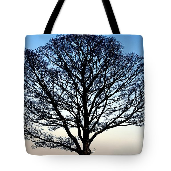 Silhouetted Tree Tote Bag