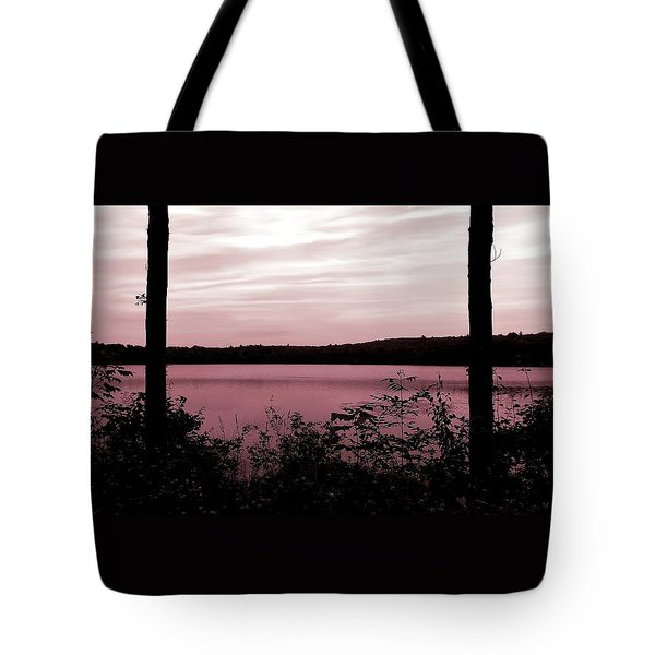 Silk And Champagne Tote Bag by Danielle R T Haney