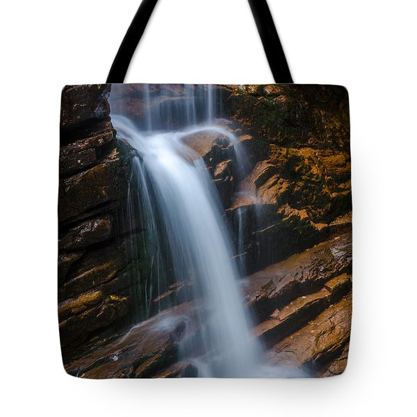 Silky Smooth Tote Bag by Mike Ste Marie